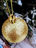 Golden ball on the Christmas tree stock photos