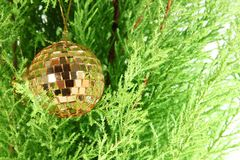 Golden ball  and firtree Stock Photo