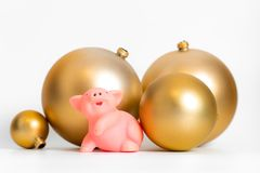 Golden balls pig Chinese New Year symbol traditional cultural zodiac calendar isolated. 2019 royalty free stock photo