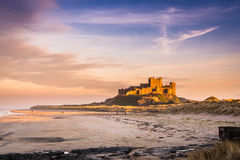 Golden Bamburgh Castle Royalty Free Stock Photography