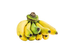 Golden banana bunch Royalty Free Stock Photography