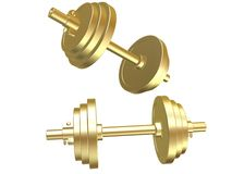 Golden barbells Stock Image
