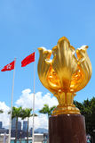 Golden bauhinia square Royalty Free Stock Photography
