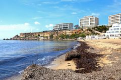 Golden Bay beach, Malta. View along the beach towards the Hotels on the cliff tops, Golden Bay, Malta, Europe Stock Photo