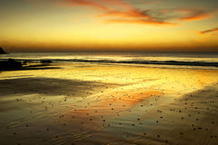 Golden Beach Stock Photos