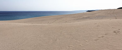 Golden Beach Stock Image