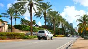 Golden Beach FL. Stock video of palm trees on the road at Golden Beach FL stock footage