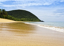 Golden beach at Guadeloupe Stock Photography