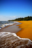 Golden beach Stock Image
