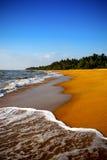 Golden beach. India sri lanca stock image