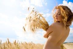 Golden Beauty Stock Photos