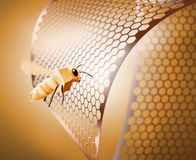 Golden bee Royalty Free Stock Photography