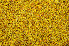 Golden bee pollen granules abstract background Stock Photo