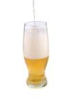 Golden beer Royalty Free Stock Photo