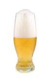 Golden beer Royalty Free Stock Photos