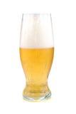 Golden beer Stock Photography