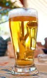 Golden beer Stock Photos