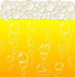 Golden beer. Stock Photography