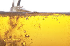 Golden beer. Royalty Free Stock Images