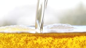 Golden beer is pouring into the glass making bubbles and foam. Golden fresh beer is pouring forming waves and bubbles stock video