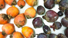 Golden beet and beetroots Stock Photo