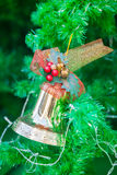 Golden bell with red ribbon ornament on Christmas Tree Stock Photography