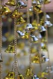 Golden bells lucky and beautiful. Golden bells lucky and beautiful Stock Photography