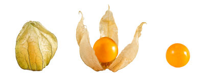Golden Berry. Golden berries (Physalis peruviana) on white background. Closed and without stock photography