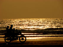 Golden Bike. A biker rides down the beach on a golden evening with his family Stock Images