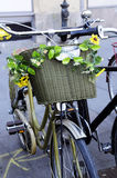 Golden Bike with Yellow Sunflowers Stock Photography