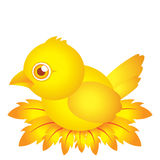 Golden bird baby cartoon character with feather Stock Images