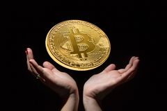 Golden bitcoin on black background over female hands. Cryptocurrency mining concept. stock photo