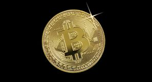 Golden bitcoin on black background Stock Images
