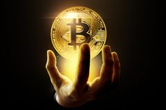 Golden bitcoin coin on black background stock image