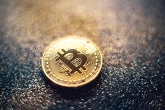 Golden bitcoin coin with glitter lights grunge crypto Currency background concept. - Image. Golden bitcoin coin with glitter lights grunge crypto Currency stock photos
