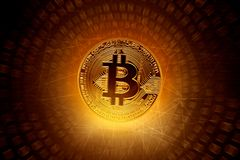 Golden bitcoin coin on technology background royalty free stock image