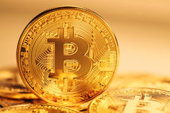 Golden bitcoin coin Royalty Free Stock Images