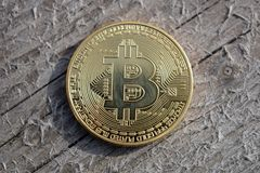 Golden bitcoin coin on wooden board background stock photo