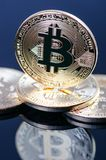 Golden bitcoin coins on a dark background with reflection. Virtual currency. Crypto currency. New virtual money. Stock Photos