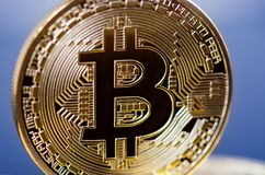 Golden bitcoin coins on a dark background with reflection. Virtual currency. Crypto currency. New virtual money. Stock Image