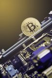 Golden Bitcoin coins on Motherboard, miner with circuit board, pool Cryptocurrency. Image stock photos