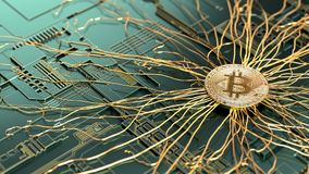 Golden Bitcoin  on computer circuit board. Cryptocurrency concept. 3d illustration Royalty Free Stock Photography