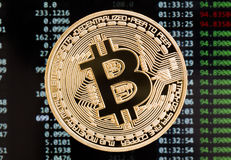 Golden bitcoin cryptocurrency coin on a circuit board background. High resolution photo Stock Photos