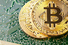 Golden Bitcoin Cryptocurrency on computer circuit board. Royalty Free Stock Photography