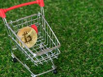 Golden bitcoin Cryptocurrency in red shopping cart on green grass background. Digital money Cryptocurrency concept.  stock photo