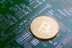 Golden bitcoin on green board with microchips and microcircuits on background. Concept of cryptocurrency, electronic payments and web banking Stock Photos