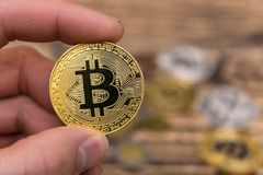 Golden Bitcoin holding in mans fingers closeup. On wooden background Royalty Free Stock Image