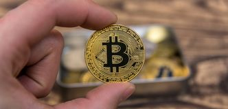 Golden Bitcoin holding in mans fingers closeup. On wooden background stock photo