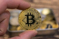 Golden Bitcoin holding in mans fingers closeup. On wooden background royalty free stock photos