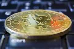Golden bitcoin on keyboard. Crypto currency concept.  stock images
